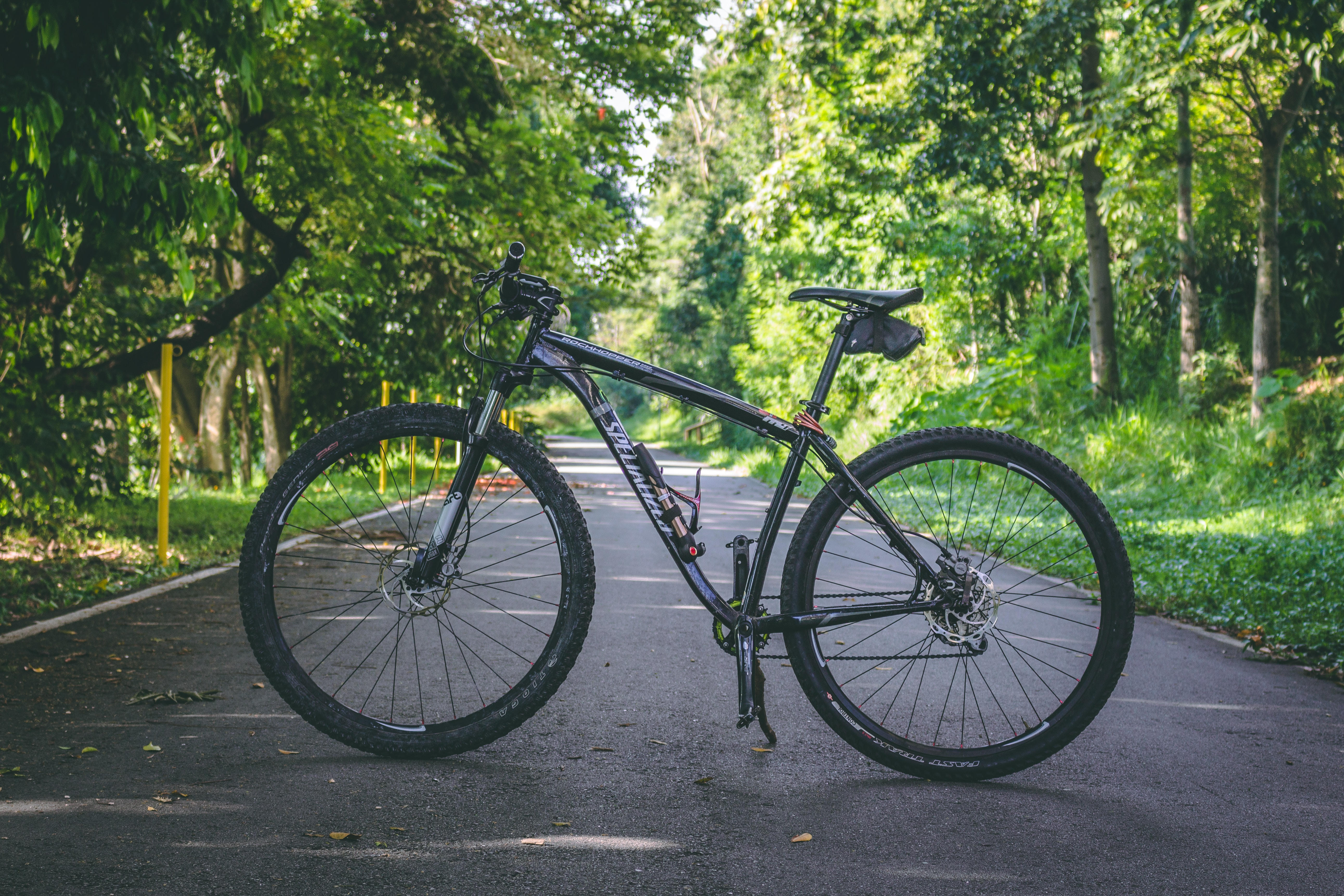 Cycle Gaining more Popularity